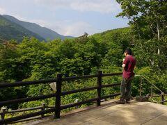 まだ時間あります 鳴子卿見物に 行きます 紅葉がきれいで有名ですが 新緑の季節もいいですね あれ 今度はソフトクリーム食べてる
