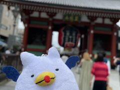 ごきげんよう。まずは浅草に降り立ちました。 スカイツリーに行くなら、やはり浅草寺にご挨拶せねばな。