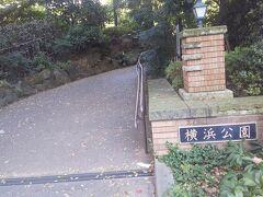 横浜スタジアムに隣接する横浜公園