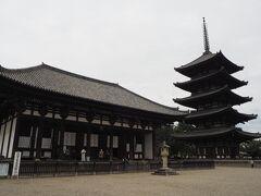 この後、ランチからガブちゃんことガブリエラさんと合流する予定なので、あまり遠くへは行かれません。  とりあえず興福寺だけ見て行きましょうか。  法相宗大本山 興福寺 世界遺産に登録されているお寺です。  興福寺の前身である「山階寺(やましなでら)」は、天智8年(669)に藤原鎌足が重い病気を患った際、夫人である鏡女王が夫の回復を祈願して釈迦三尊や四天王などの諸仏を安置するために造られたものと伝えられているそうです。   手前の建物は国宝の東金堂。 神亀3年(726)に聖武天皇が叔母の元正太上天皇の病気全快を願って建立されたそうです。   ※興福寺HPより https://www.kohfukuji.com/