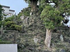 富士塚の全体像を見るために、脇の駐車場から見てみました。