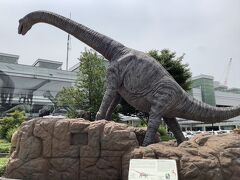 大きな恐竜がいます