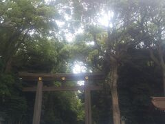 鳥居に木々が。 落ち着く。