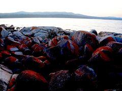 東の海岸線までドライブして、ベイオブファイア Bay of Firesで夕日を見ます。タスマニア北東海岸で有名なのは燃える様なオレンジ色の岩。オレンジは地衣類の色でコケ類とは違う種類のものらしいです。ベイオブファイアの名前の由来は、探検家が初めてこの地を訪れた時、この岩が燃える様なオレンジに見えたとか、奥の海岸線に暮らしていたアボリジニの火の列とか言われています。