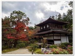 落ち着いた趣  金閣寺はピッカピカで対照的