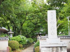 住宅街を登り切ってちょっと下った場所にありました、妙蓮寺。  思っていたより遠かった。