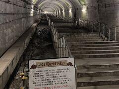 日本一のモグラ駅。 改札まではこの長い462+24段の階段をひたすら登らないと辿りつけません。 いやーすごい駅。  両脇にエスカレーターを作る予定でこのような溝を設けていたようです。もちろん、一日5本しか停車しない現在の状況ではそんなものができることは今後ないでしょう。