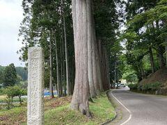 お寺の入り口のあたりに来ました。 並木がいい感じです。
