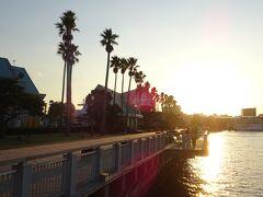 港の周辺をぶらぶらします。桜島フェリー港の近くには水族館などもあります。