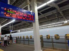 満足の夕食を終えて、いそいそと九州新幹線「さくら号」に乗りこみます。九州新幹線を走破し、山陽新幹線経由で終点新大阪まで乗車します。