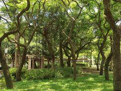 木陰を求めて緑の多い公園に吸い込まれる。 【林森公園】のようです。