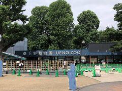 東京・上野『上野動物園』の写真。  2021年6月4日から再開園しました♪ 当面の間、上野動物園への入園には整理券の予約が必要です。  ジャイアントパンダ「シンシン」は妊娠の可能性があるため 公開中止となっています。  上野動物園では再開園にあたり、公共交通機関と園内の混雑緩和、 新型コロナウイルス感染症の拡大防止、飼育動物の安全確保のために、 当面のあいだ整理券予約システムによって1日の入園者数を制限します。 どなたも事前に整理券による予約が必要になります(完全予約制)。 ご協力をお願いいたします。  <再開園日> 2021年6月4日(金)    <入園者数上限> 2,000名/日   <入園門> 東園の表門のみ。その他の門は退園できますが入園はできません。