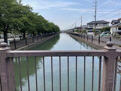 葛西用水路、みずを見ながら歩くと暑さも癒されます。