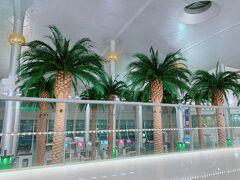 10時間のフライトを終えてドバイに着陸。 速攻現れた、この椰子の木に南半球を思わせます