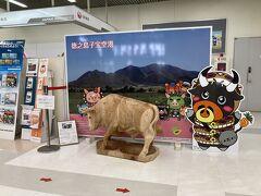 チェックインカウンター横に記念写真用闘牛。 右の牛、ハブにぐるぐる巻かれてない?
