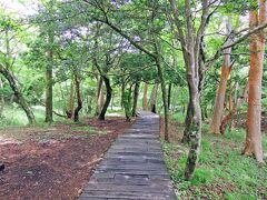敷地内には森の遊歩道があります。