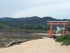 まずは青島神社。海岸線には鬼の洗濯板の波状のごつごつした岩が広がっています。