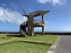 巨大なマンタのモニュメントがある海人公園へ 小浜島は結構なアップダウンがあり、また暑さもあって電動自転車でも体力の無い私にはハードなサイクリングとなりました