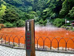 ひゃーっ、真っ赤でまさに地獄ですね。 昔は何年かおきに爆発していたとか、現在は血の池地獄を攪拌することに爆発は起こっていないそうです。