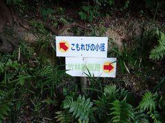 大高領地には,いろいろと散歩道があります。