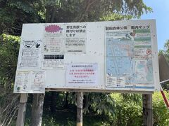 まずは、★前田森林公園★からスタート。  森林公園という名前の通り、「花」がメインの公園ではありません。 が、まるっきりないわけでもなく。  今の季節「藤の花」が満開になるとテレビのニュースでも取り上げられるくらい、札幌の中では「藤の花」の名所。