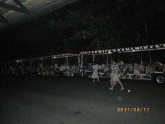 ナイトサファリに到着した時はもうかなり暗かった。歩くと時間もないのでトラムに乗って廻ることにした