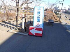 ホテルに一泊した後,朝千波公園を散歩してみました.
