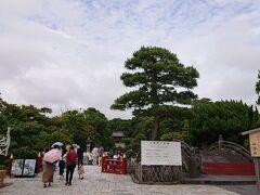 鶴岡八幡宮に到着。休日ですが、ちょうど良いくらいに空いています。