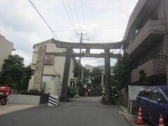 その先で旧白山通りを斜め右に進んで、少し進んでから路地を右に入ったところ 突き当りにあるのが白山神社 こちらは表参道ではなく東参道になります この白山神社はあじさいで有名な神社ですね
