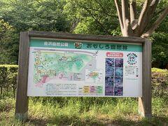 「金沢自然公園」の「おもしろ自然林」「植物区」はまだ行ったことありません。ハイキングコースもありまだまだいろいろ楽しめそう。