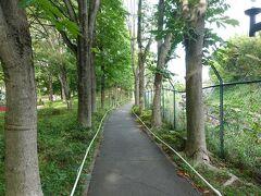 西武園ゆうえんち駅に向かう素敵な並木道。