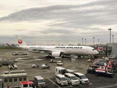 A350にも早く乗ってみたいなぁ... 結局今回の帰国では乗る機会がなかった