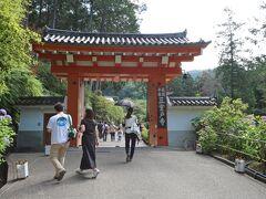 三室戸寺です  緊急事態宣言中ですが、感染者数が落ち着いてきたのも有るのでしょうね、結構な観光客数です・・・