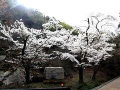 しょうざんリゾート京都から徒歩1分。 簡単に言えば、すぐ目の前にアマン京都があります~。