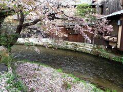 高瀬川の流れが心地よく。。。