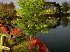 八条が池畔のモミジとツツジ、そして水上橋と六角舎。