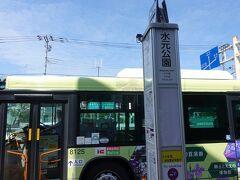 水元公園バス停に着きました。