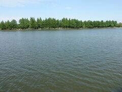 とても広い池です。 このペッタリとした林と池の感じが本当にフィンランドあたりの風景っぽいです。 東京23区内ににこういう景色があるとはすごいですね。  この広い池は小合溜という池だそうです。 元は古利根川の跡を江戸時代に仕切って作ったのだそうです。