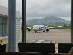 のんびりマリヤシェイクを飲んでる間に、乗る飛行機が着きました。