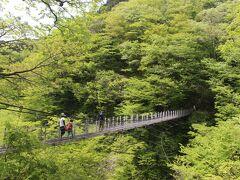 大山滝吊り橋