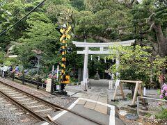 長谷寺の後は、江ノ電とあじさいのコラボレーション写真が撮れるスポットとして有名な御霊神社にやってきました。