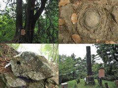 夫婦杉、牡丹岩、天狗の鼻突き岩などを見ながら歩き、十六丁目追分の碑で蓑毛からの登山道と合流。ここにはベンチもあり小休止。