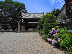 世界遺産元興寺。こちらも入り口に紫陽花が咲いていました。