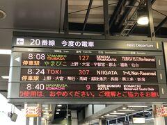 旅のスタートは東京駅。駅ねっと予約で通常の半額、約5000円で利用することができました。ちなみにこの切符をゲットするためには、抽選に応募して、今回はやまびこ号が第3希望で得ることが出来ました。はやぶさ号は人気で複数人で旅するときは抽選が当たらないようですね。