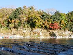 長瀞岩畳に来ました。 若干、紅葉には早いですが色づいている木もあり。
