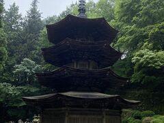 とはいうものの、国宝の安楽寺八角三重塔だけは見ようと、痛みに耐えながらどうにかたどり着きました。  日本で唯一の木造八角の三重塔らしいです。