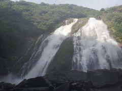 ここからは2019年9月に訪れた時のものです。 やっぱり最初に行ったのが大川の滝。(オオコノタキ) ほぼ真下まで行けるので迫力がります。
