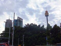 シドニータワー (Sydney Tower Eye) 高さ305mで、展望台が250mのところにあります。