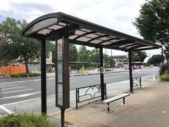 小田急バスのバスのりば「神代植物公園前」 (吉祥寺駅行、三鷹駅行、調布駅北口行、武蔵境営業所行)の写真。  「調布駅北口」から乗車し、武蔵境通りにあるこちらのバス停で 下車しました。  斜め前に「調布駅北口」行きのバスのりばがあります。 ひとつ下の写真の時刻表は斜め前のバス停のものです。