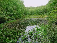 植樹イベントをしているゲレンデから少し進むと、下の小池に到着です。